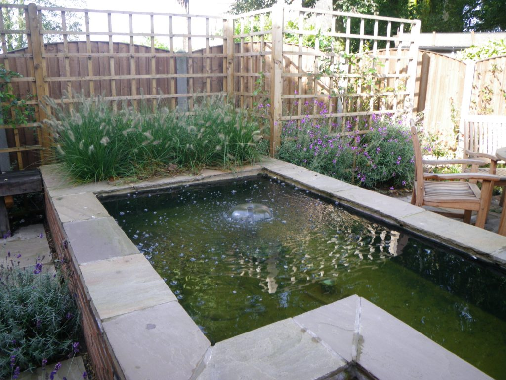 Raised Pond With Trellis